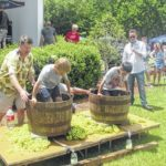 Wine festival turnout is anything but stale