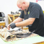 Surry CC offers taxidermy orientations in January